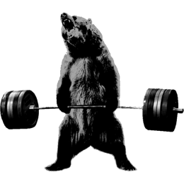 Bear Weights